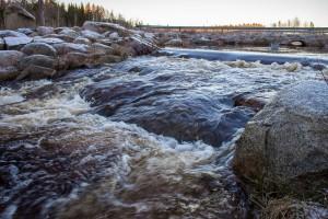 sääjärven kalaportaatLL