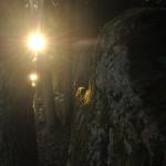 Auringon kurkistus/ Sanna Nieminen-Vuorio