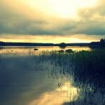 Isojärvi/ Päivi Remula