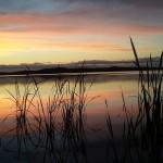 Kernaalan heinäkuun kauneus/ Minna Kuisma