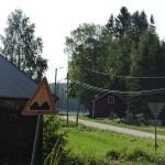 Kylänraitti/ Anna Saarimaa