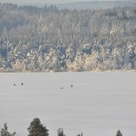 Pilkkijät Lastujärvellä/ Päivi Remula