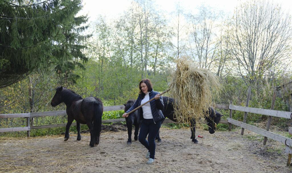 Niina antaa poneille heinää.