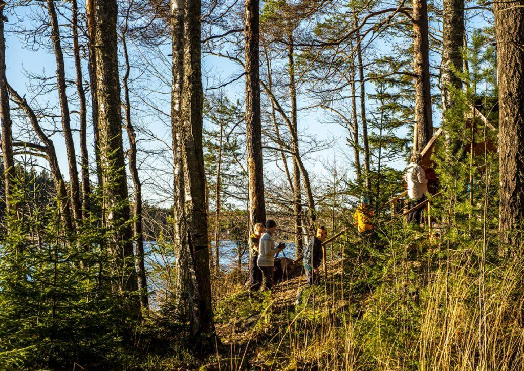 ihmisiä menossa laavulle järven rannalla
